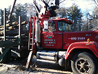 Tree Removing Truck